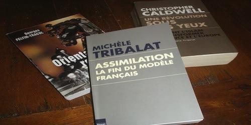 « Assimilation:/ La fin du modèle français » de Michèle Tribalat (une deuxième analyse)