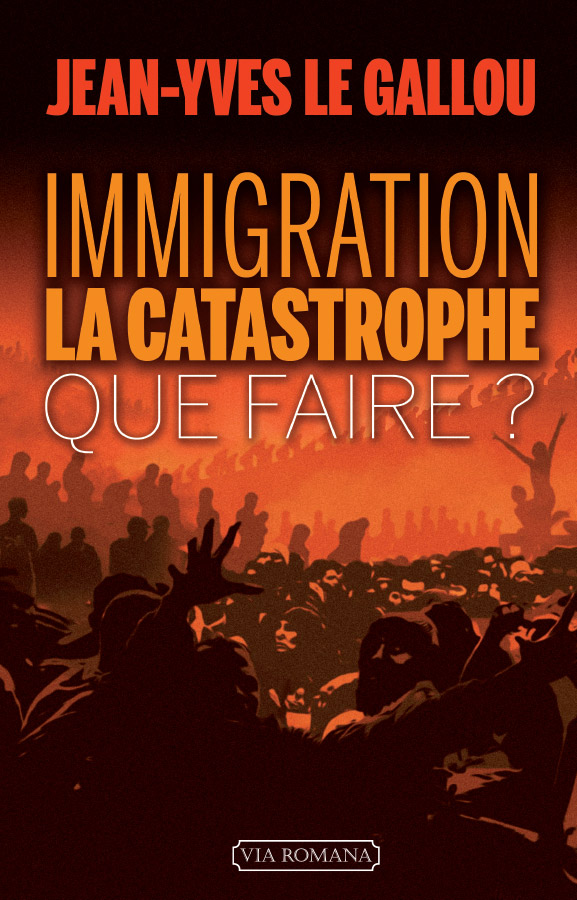 Immigration, la catastrophe. Que faire ?