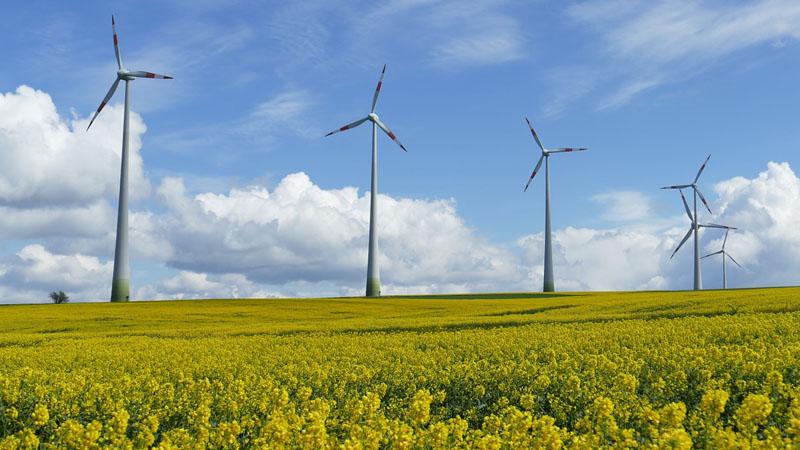 L'escroquerie éolienne