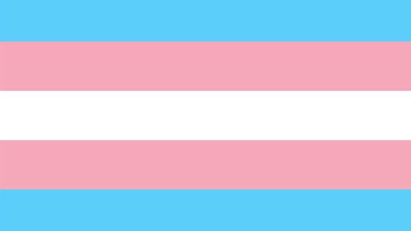 «Transidentité» à l'université de Lille : une dérive sociétale