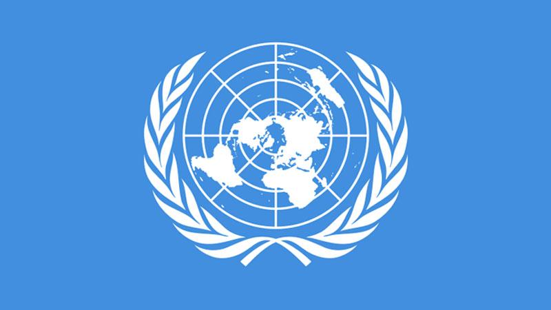 Pour l'ONU, les races existent