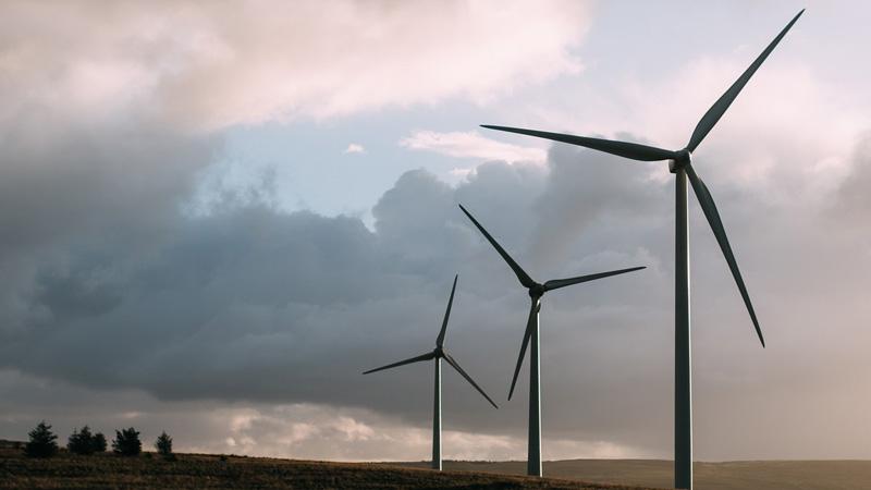 Éoliennes : 30 millions de tonnes de béton pour sauver la biodiversité