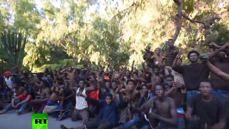 La France subit-elle une immigration de peuplement ?