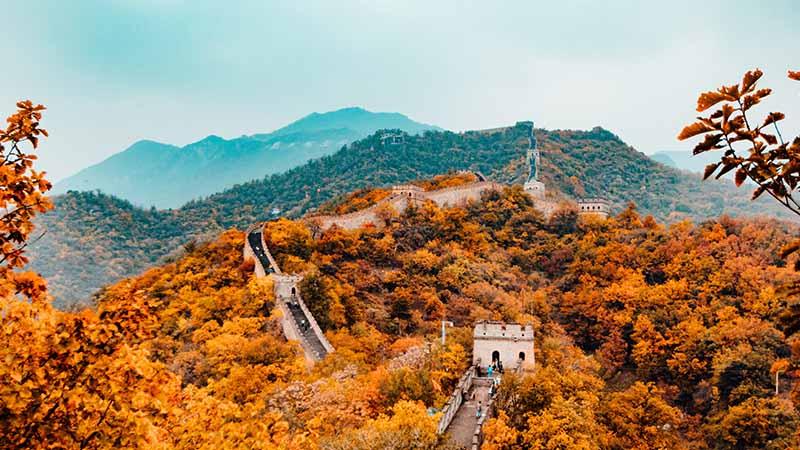 Face au Coronavirus, la stratégie de la grande muraille de Chine