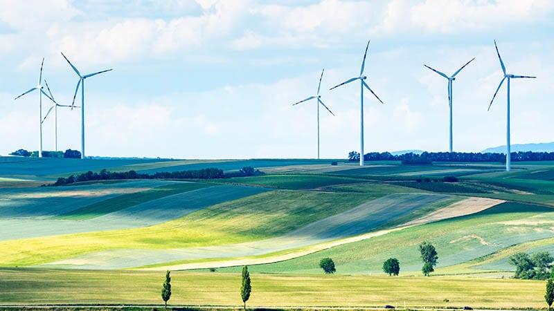 Éoliennes et remplacisme global