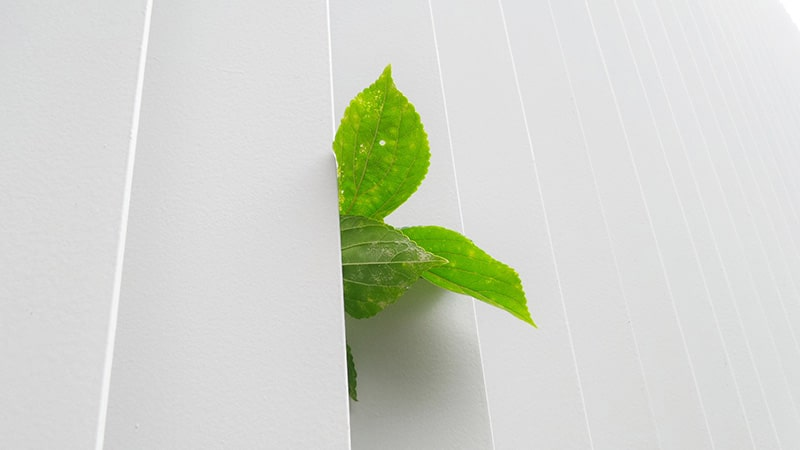 L'idéologie « verte » comme nouvel avatar de la fracture sociale