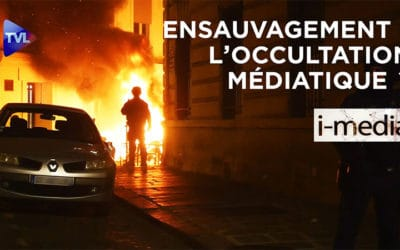 I-Média n°311 – Ensauvagement : l'occultation médiatique ?