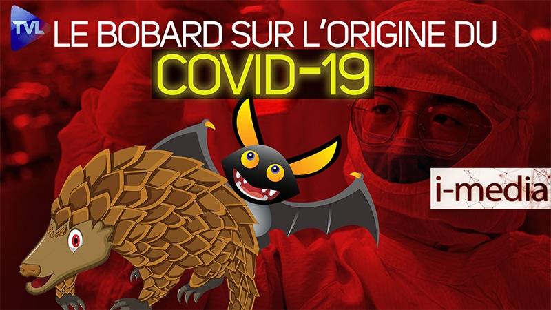 I-Média n°250 – L'énorme bobard des médias sur l'origine du Covid-19
